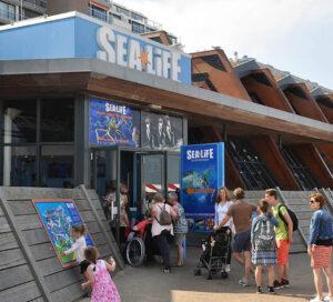 Interactive sandbox at Sea Life