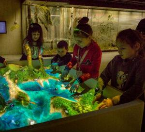 iSandBOX at Darwin Museum