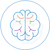 iSandBOX - Cognitive skills
